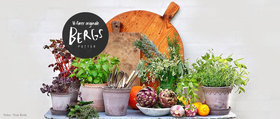 Italienske krukker i klassisk og moderne design til haven og hjemmet