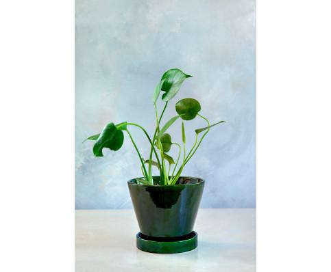 Julie Green Emerald (grøn)