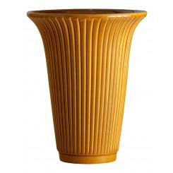 Daisy Yellow Bergs Potter
