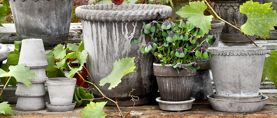 patina på urtepotter